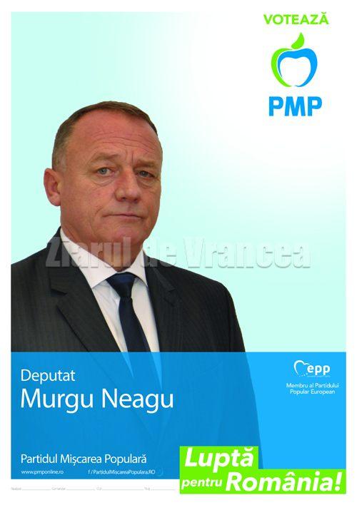 murgu-zdv-15-11-2016