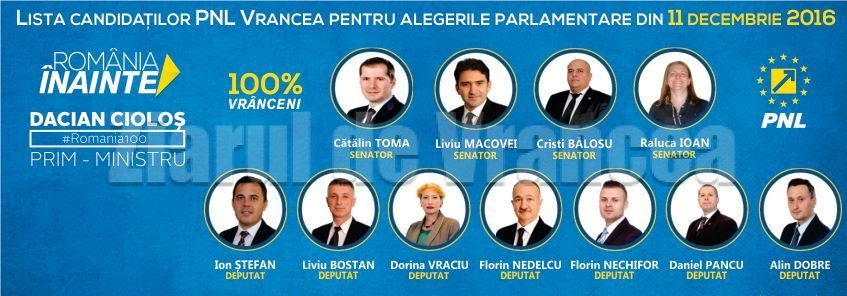 pnl-candidati-parlamentari